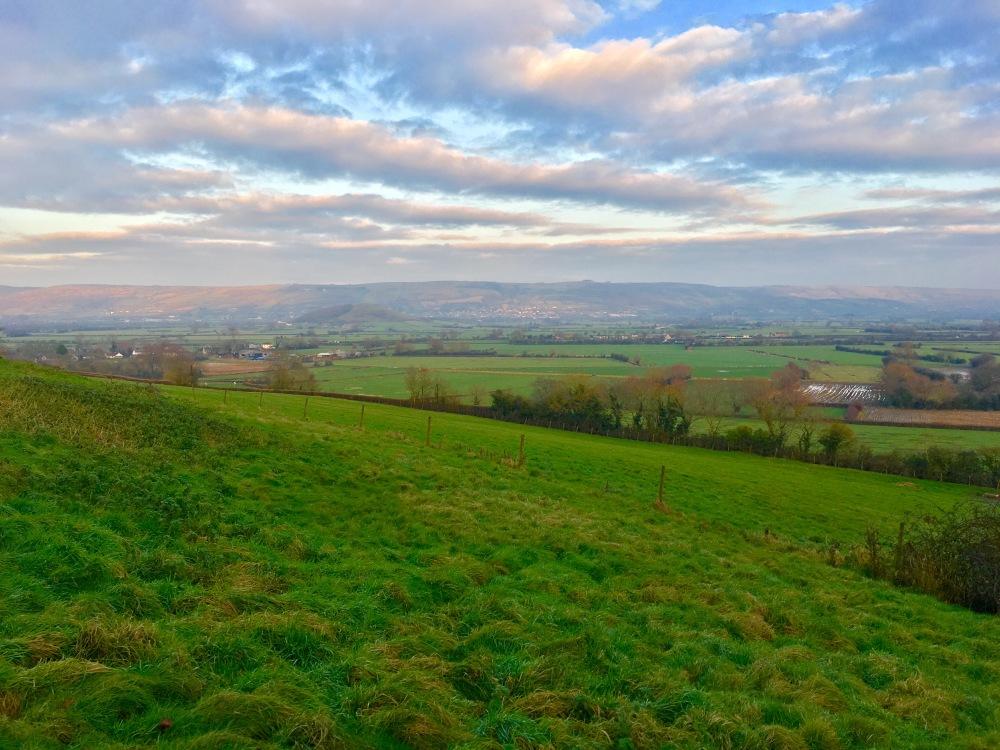 Wedmore Landscape.jpg