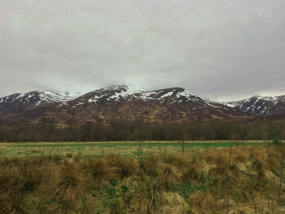 Scottish Highlands-8150