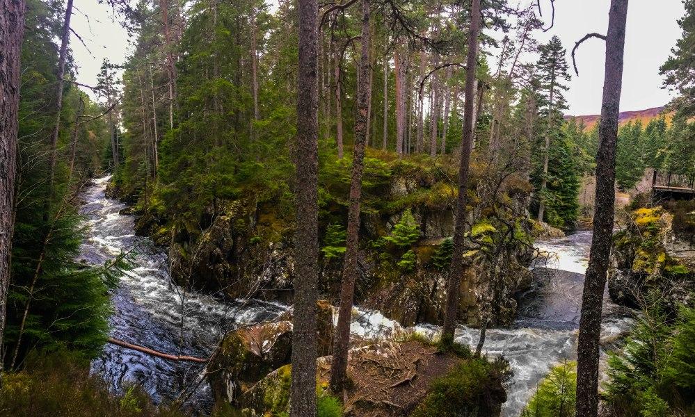 Scottish Highlands-8184