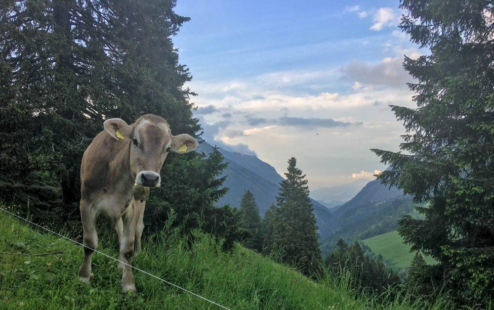 Liechtenstein-2269
