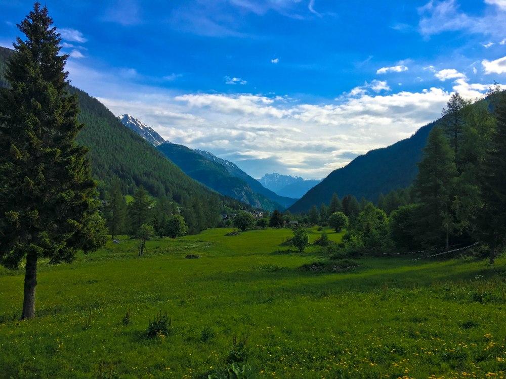 The Alps-1677