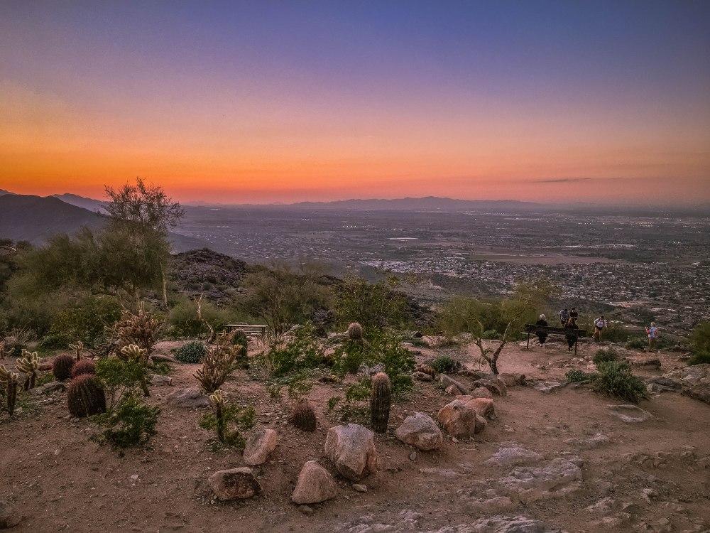 Phoenix - Part 1 -8913